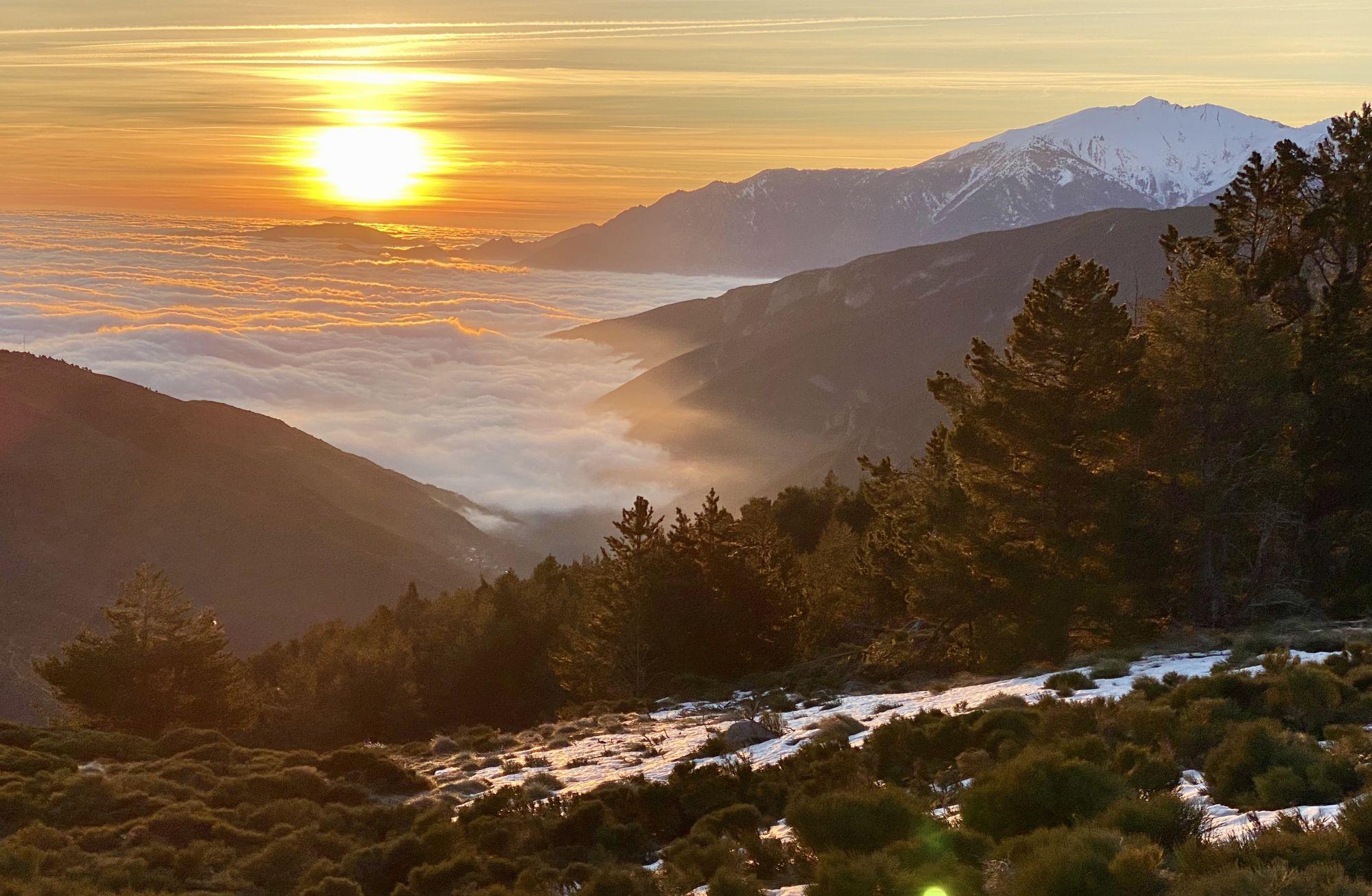 Pyrénées Orientale Chasse